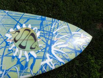 Surfboard Paint Color